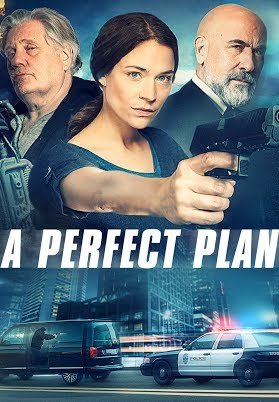 A Perfect Plan FRENCH DVDRIP LD 2020