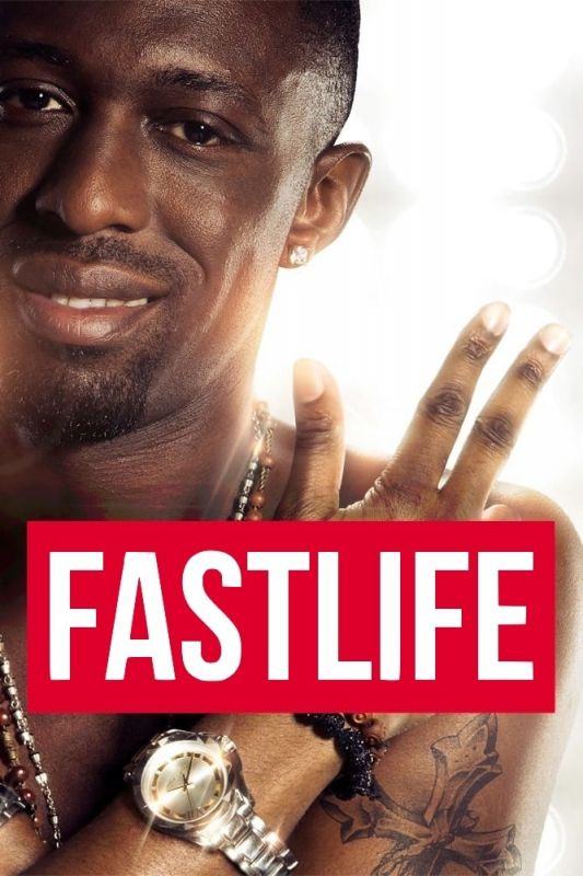 Fastlife FRENCH DVDRIP 2014