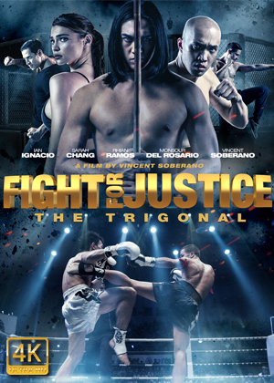 Fight for Justice FRENCH DVDRIP LD 2020