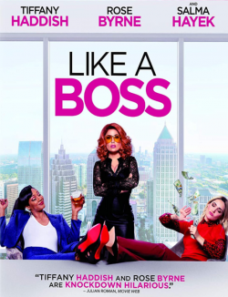 Like a Boss TRUEFRENCH DVDRIP 2020